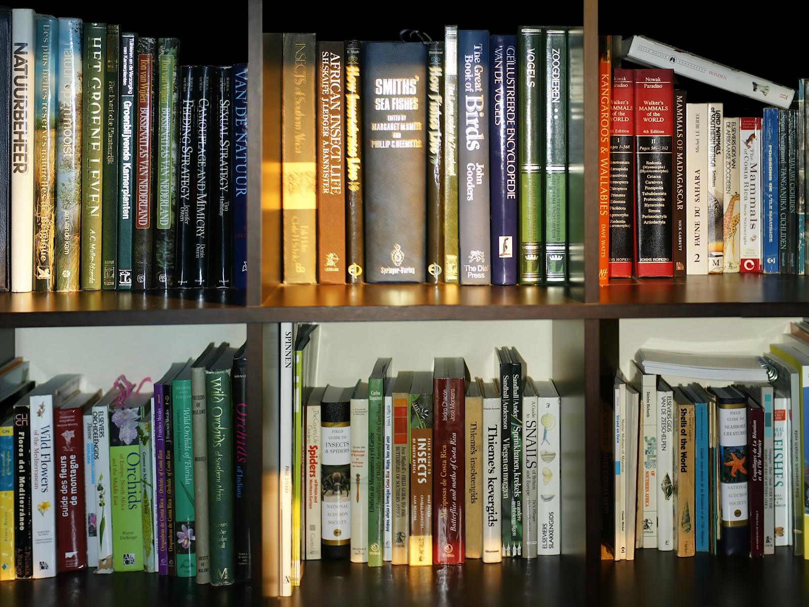 Inventaire bibliothèque (Novembre 2018)